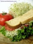 vegetarian food123