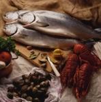 omega3-minyak ikan